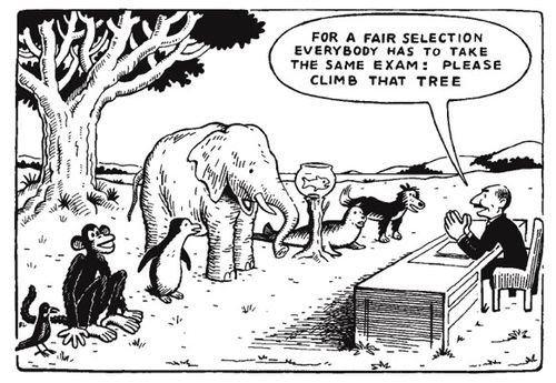 elephant singe et autres animaux doivent monter à l'arbre